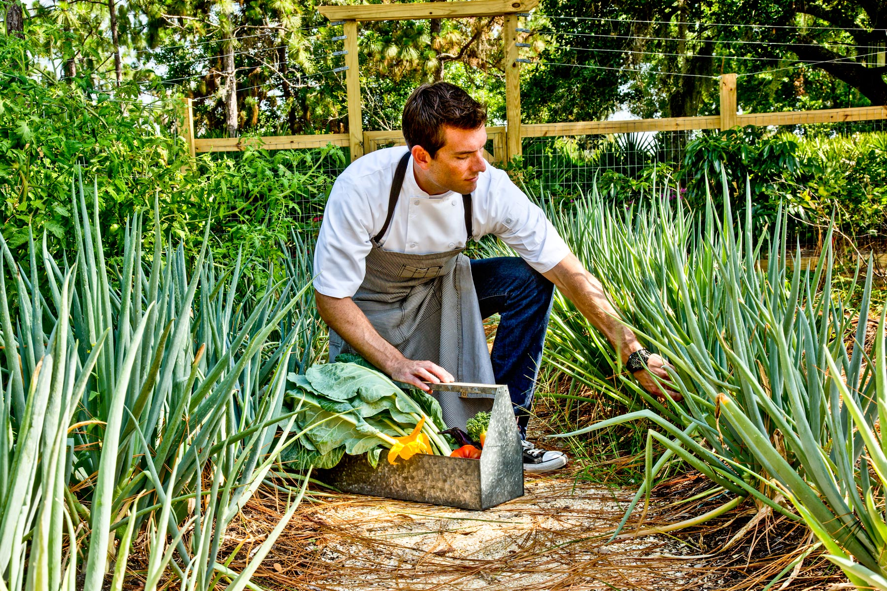 Chef & Restaurant Photography | Chef in Garden