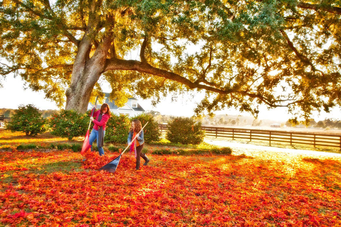 Lifestyle Photography | Mom & Daughter raking leaves