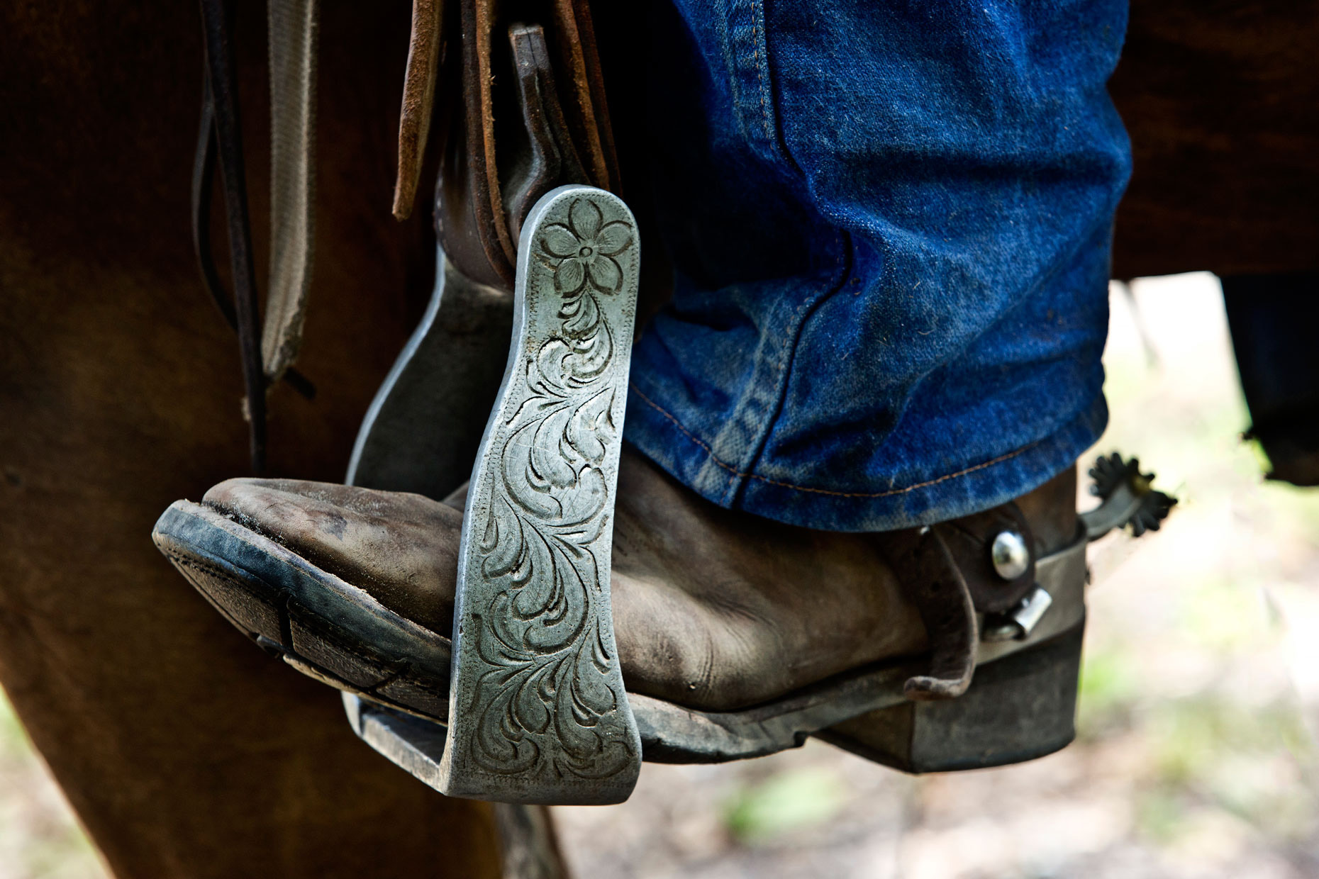 Lifestyle Photography | Seminole Cowboy